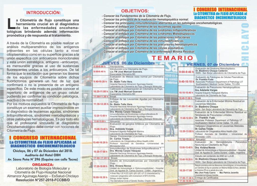 TRIPTICO - ACTUALIZADO-I