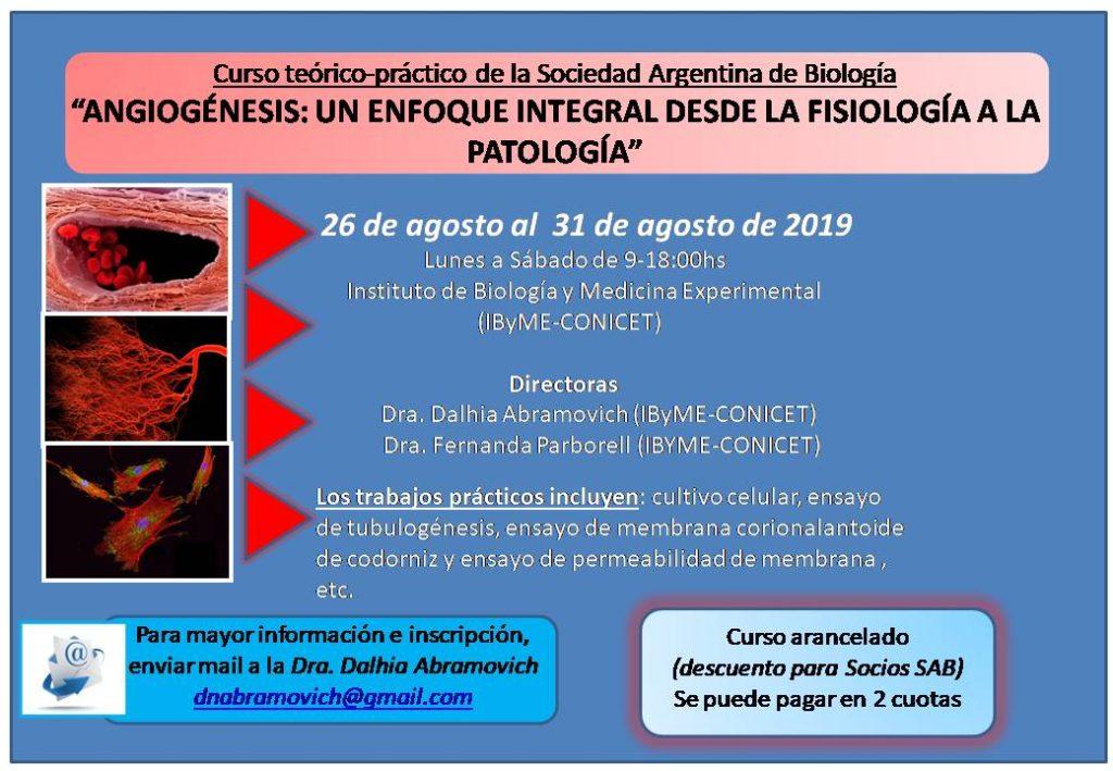 flyer angiogenesis 2019